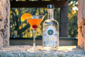cocktail_mixologia_gin_mexicano
