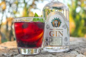 gin_mexicano_mixologia_cocktail_negroni