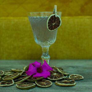 Xolo_perro_desterrado_gin_cocktail
