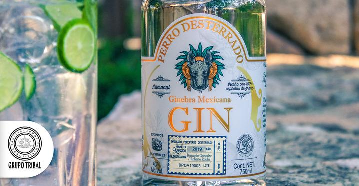 Fun_facts_about_gin